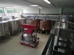 ornellaia winery (4)