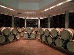 ornellaia winery (7)