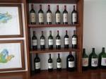 ornellaia winery (8)