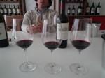 ornellaia winery (9)