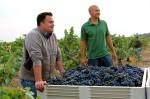 Tegan Passalacqua and MDW vineyard manager Emilano Castanon-Courtesy Lodi Winegrape Commission