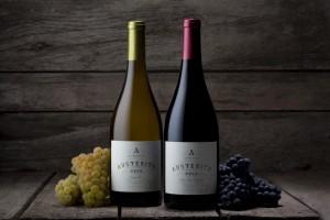 austerity wines