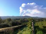 Sciara Nuova Vineyard 1