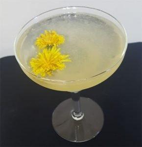 Dandelion Margarita