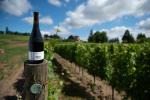 2018 Sokol Blosser Estate Pinot Noir Dundee Hills
