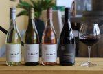 2020 Chehalem Inox Unoaked Chardonnay Willamette Valley